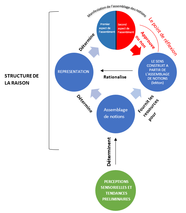 Structure raison